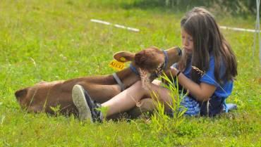 Open Farm Days