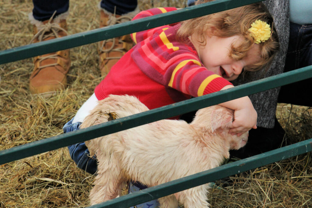 Brynn Daisy Williams welcomes a newborn goat at last year's ShineOnCass Animal Baby Shower & Egg Hunt at Hart-to-Hart Farm in Albion. The third annual event is scheduled from 2 to 4 p.m. Sunday, May 5, and features visits and photo-taking with newborn animal babies, an egg hunt, farm games and crafts.